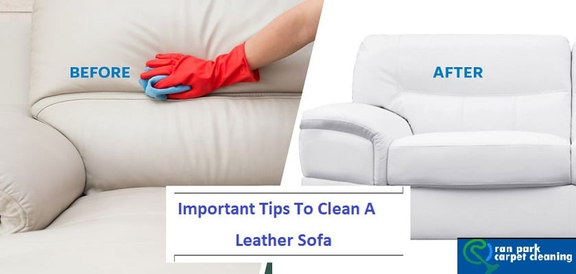Remarkable Important Tips To Clean A Leather Sofa Oran Park Carpet Pabps2019 Chair Design Images Pabps2019Com